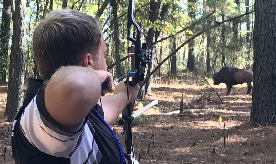 Photo for KCU Archery Excels at 3D Nationals